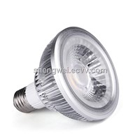 ETL COB PAR20 PAR30 PAR38 PAR Light LED