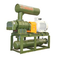 Roots blower for waste water treatment system