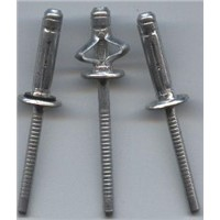 Lantern Type Aluminium POP Rivet