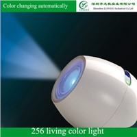 256C Living Color Light,color changing mood led light,led color changing landscape lights