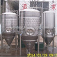Stainless Steel Cone Fermenter