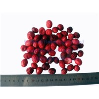 High Quality Freeze Dried Cranberry Freeze Dried Food Natural