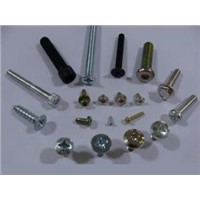 Standard/Customized Self Tapping Stainless Screws and Fasteners