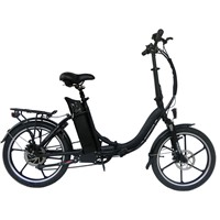 Popular Electric Bike with 6061 Aluminum Alloy Frame
