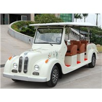 Wuhan Haoxing 8 seats Electric BMW Classic car