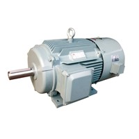 YE2VP IE2 Inverter Series of Three phase asynchronous Motor