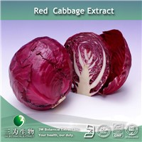 Cabbage Extract