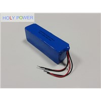 36V 9Ah LiFePO4 Battery Pack HLY-12F9