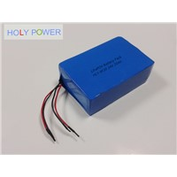 24V 20Ah LiFePO4 Battery Pack HLY-8F20