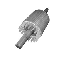 induction motor squirrel cage rotor