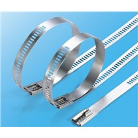 Hot product 18/8 stainless steel cable tie with ladder