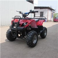 Electric ATV/Electric Farm ATV/Electric Farm Quad/Electric Utility ATV