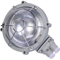 explosion proof ceiling light