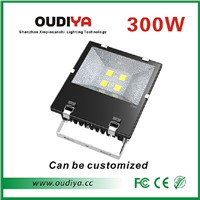 300w waterproof flood light bridgelux cob outdoor led flood light