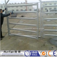 Metal Cattle Panels