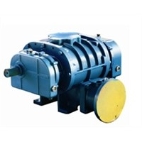Roots Pump Vacuum Pump