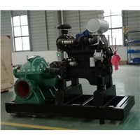 Double Suction Water Pump for Farm Irrigation