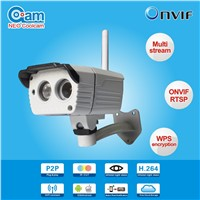 Fully functional wps onvif p2p waterproof camera with ir vision ir cut outdoor camera