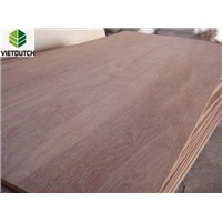 Nice plywood with Keruing face veneer
