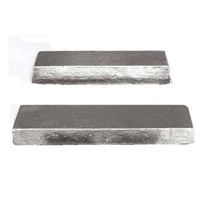 Pure Tin Ingot 99.99% with Factory Price