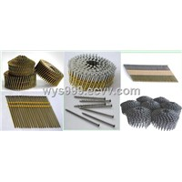 wire coil roofing nail,pallet nail,stainless steel nail, copper/brass nail