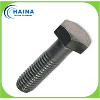 stainless steel hex bolt,hex head bolt,heavy hex bolt