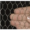 View Larger Image Vinyl Coated Hexagonal Wire Netting / PVC Hex Wire Netting Vinyl Coated Hexagonal Wire Netting / PVC