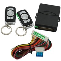 Classical Car Keyless Entry with Remote Trunk Release Signal Negative&Positive  Light Connect