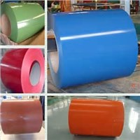 Prepainted galvanized steel sheet coil