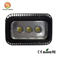 100w Waterproof LED Floodlight Outdoor Light Park/Garden/Hotel Lights