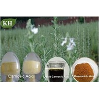 Rosemary Extract:Rosemarinic acid 2% to 98%; Ursolic acid 25% to 50%;Carnosic acid 5% to 70%