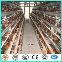 Factory Supply 4 Tiers 160 Chickens Poultry Farm Layer Cages