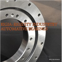 RKS.900155101001 slewing ring bearing no gear