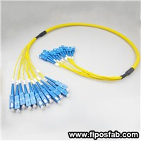 12 Cores Breakout Fiber Optic Patch Cord