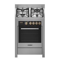 Vezsin 24 Inch Stainless Steel Free Standing Gas Cooker with Oven (G24D09)