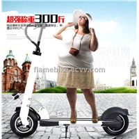 Aluminum Folding Electric Bike with 2 Wheels
