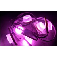 Popular Pink Color LED Modules For Light Box