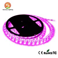 Pink Color (30/60/90/120leds/M) SMD 5050 Waterproof LED Strips