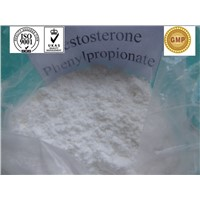 Testosterone Phenylpropionate Injectable Anabolic Steroids Powder