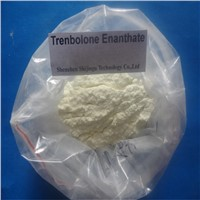 Pain free 200mg/ml Trenbolone Enanthate Oil based finished liquid steroids