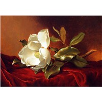 hand painted modern flower oil paintings