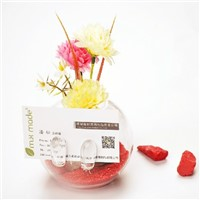 Glass Terrarium Vase Home Decoration Business Gift Glass Name Card Creative Business Promotion Gift