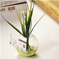 Glass Terrarium Name Card Creative Home Decorative Glass Vase Business Gift Glassware China Supplier