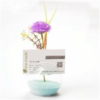 Name Card Glass Base Creative Office Name Card Glass Holder Glass Terrarium Vase Home Decoration