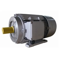 High-Pressure Washer Motor