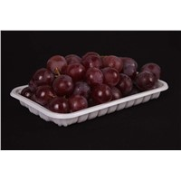 plastic food tray fruit packaging