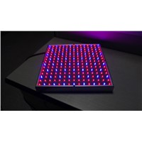 LED lights red and blue layered plant breeding fill light Grow Light