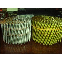 Collated nails /coil nails /wire coil nails