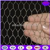 Poultry and small animal wire netting roll/PVC coated galvanized/bird cage chicken wire