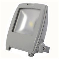 COB Bridgelux/Epistar LED Flood Light/Outdoor Street Lighting 100W